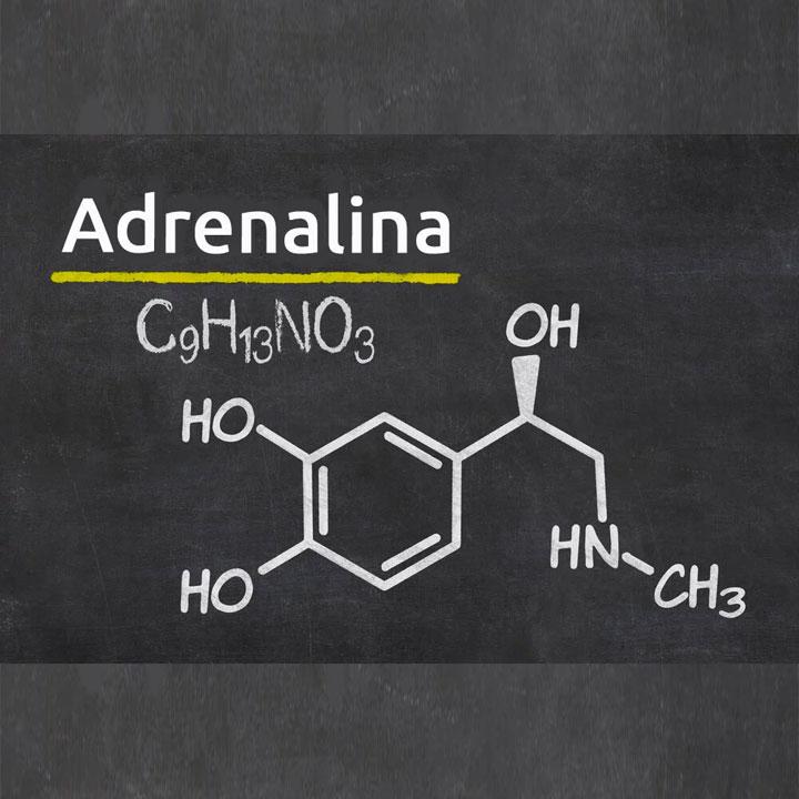 Frasi Sull Adrenalina