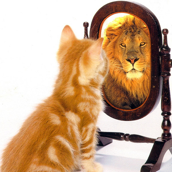 Frasi sull'autostima
