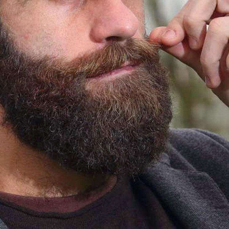 Frasi sulla barba