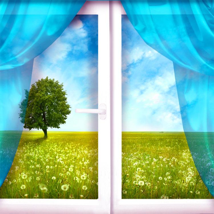 Frasi sulle finestre