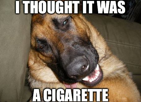 I thought it was a cigarette