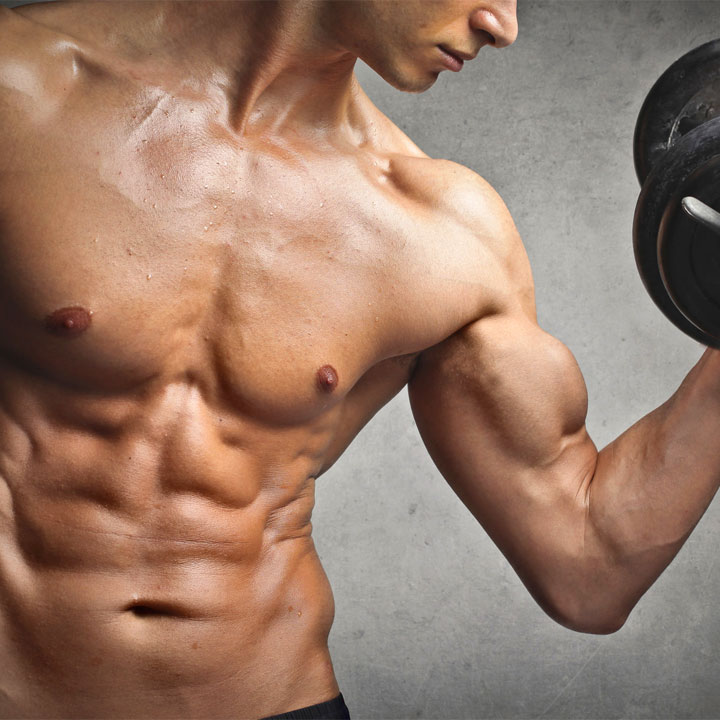 Frasi sui muscoli
