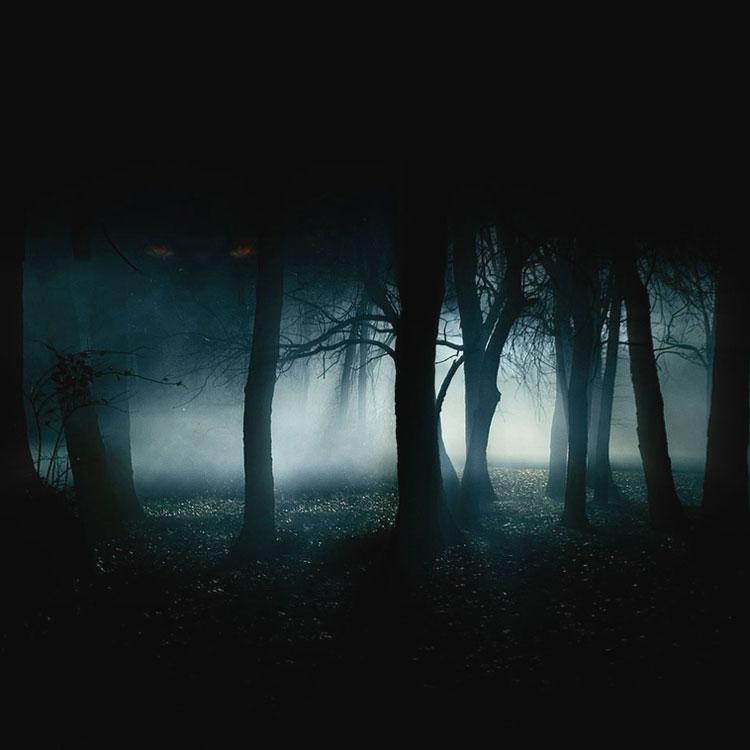 Frasi Sull Oscurità