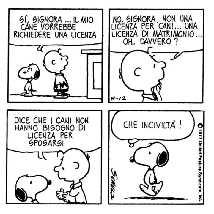 Charlie Brown: Sì, signora... Il mio cane vorrebbe richiedere una licenza. No, signora, non una licenza per cani... Una licenza di matrimonio... Oh, davvero? [A Snoopy] Dice che i cani non hanno bisogno di licenza per sposarsi.  Snoopy: Che inciviltà!