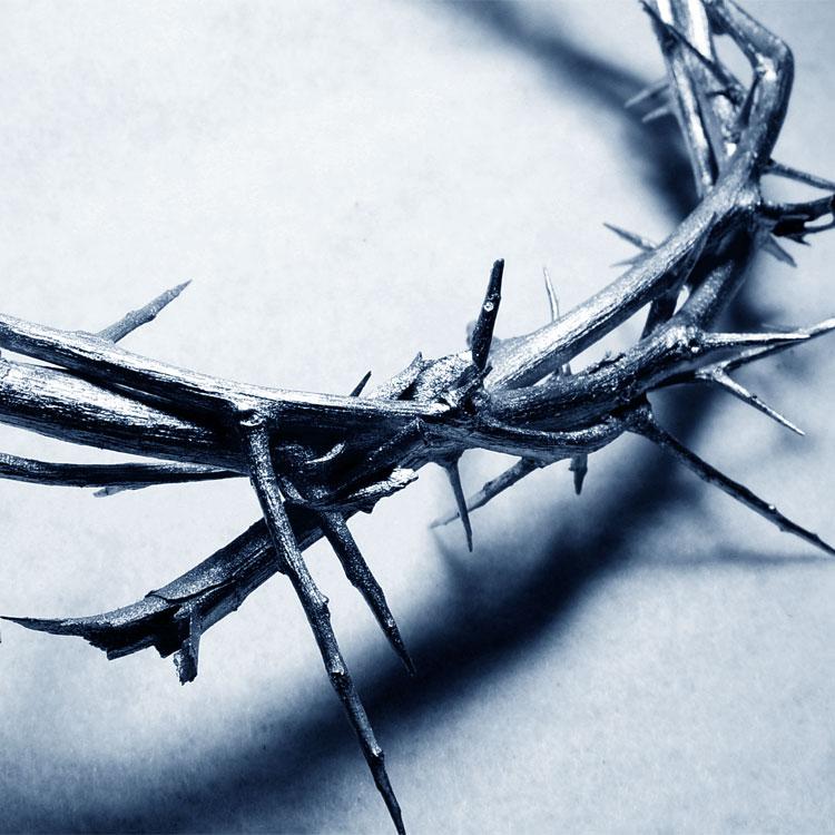 Frasi sulle persecuzioni