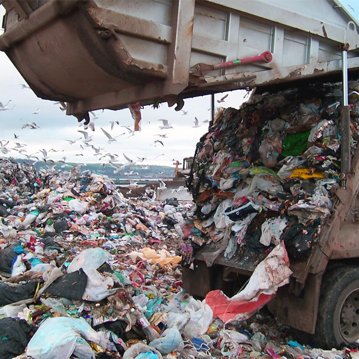Frasi sui rifiuti