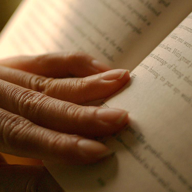 Frasi sul romanzo