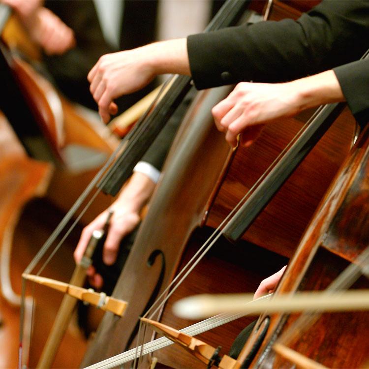 Frasi sulle sinfonie