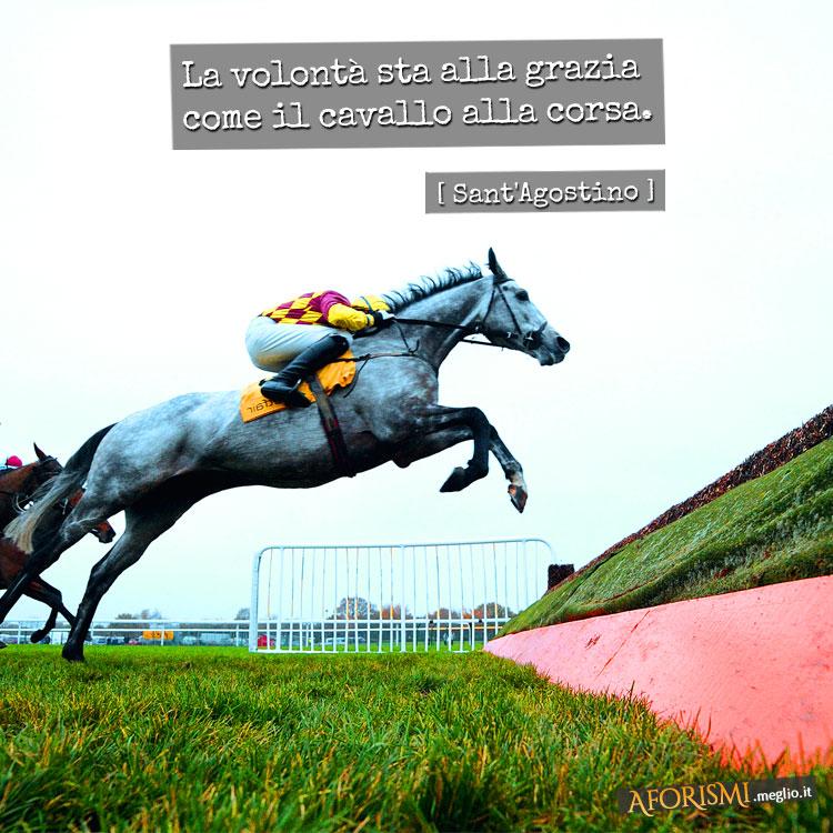 La volontà sta alla grazia come il cavallo alla corsa.