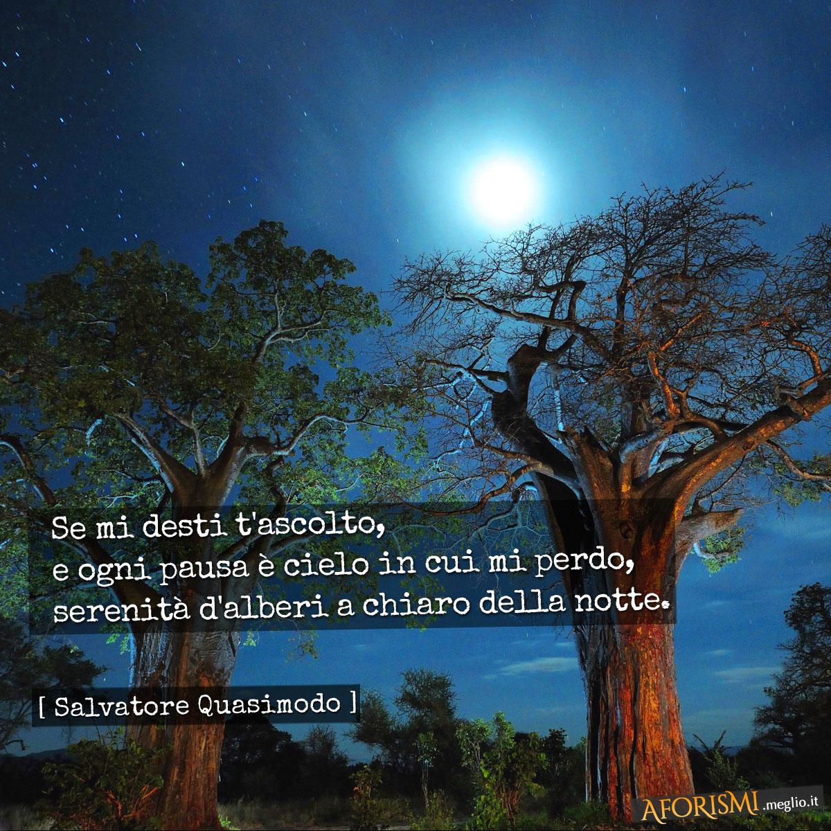 Se mi desti t'ascolto, | e ogni pausa è cielo in cui mi perdo, | serenità d'alberi a chiaro della notte. |  | [Tratta da: Acque e terre]
