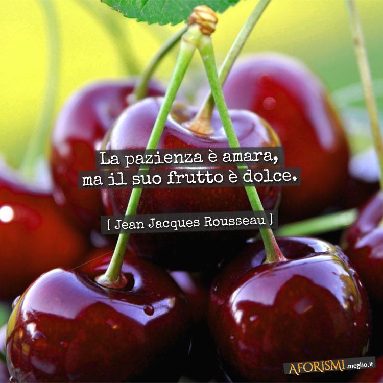 Top Jean-Jacques Rousseau • La pazienza è amara, ma il suo frutto è dolce. YL62