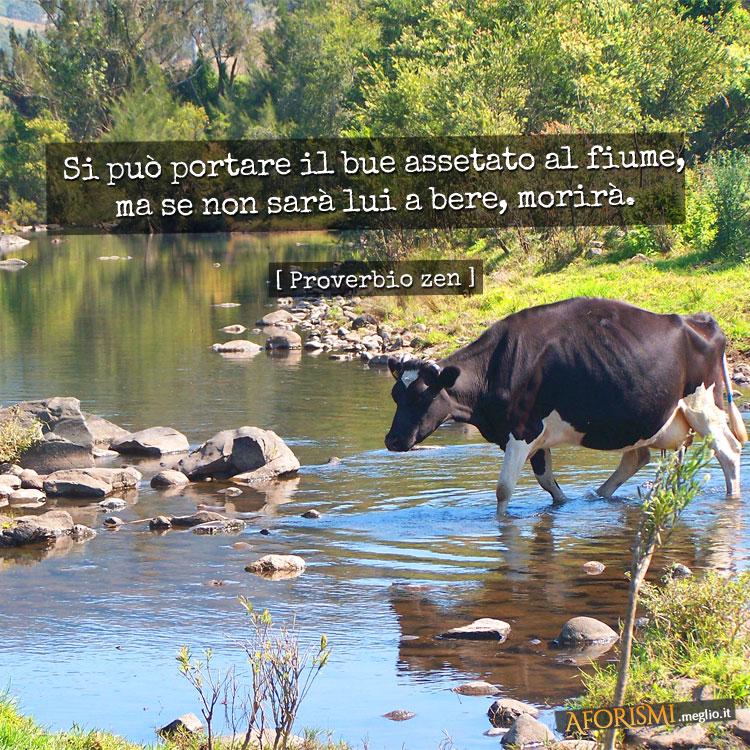 Si può portare il bue assetato al fiume, ma se non sarà lui a bere, morirà.