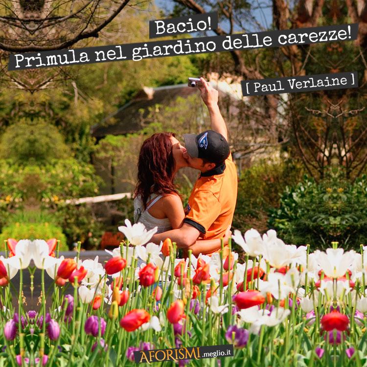 Bacio! Primula nel giardino delle carezze!