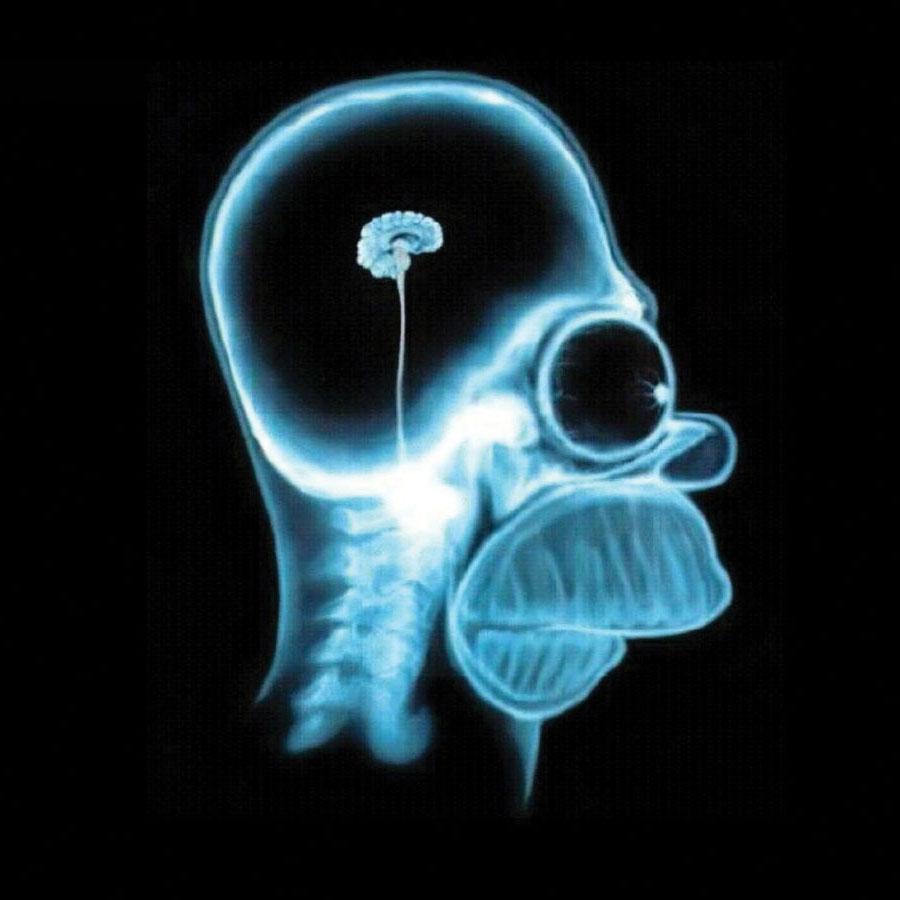frasi sulla stupidit u00e0 x ray clip art preschool x ray clip art hand