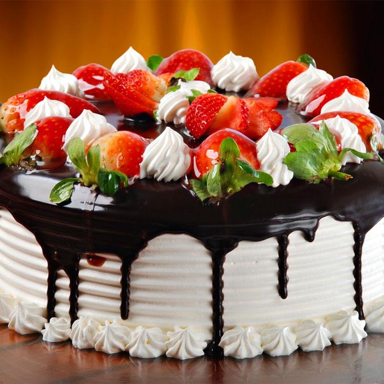 Frasi sulle torte