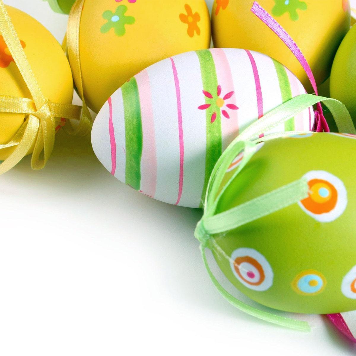 Frasi sulle uova
