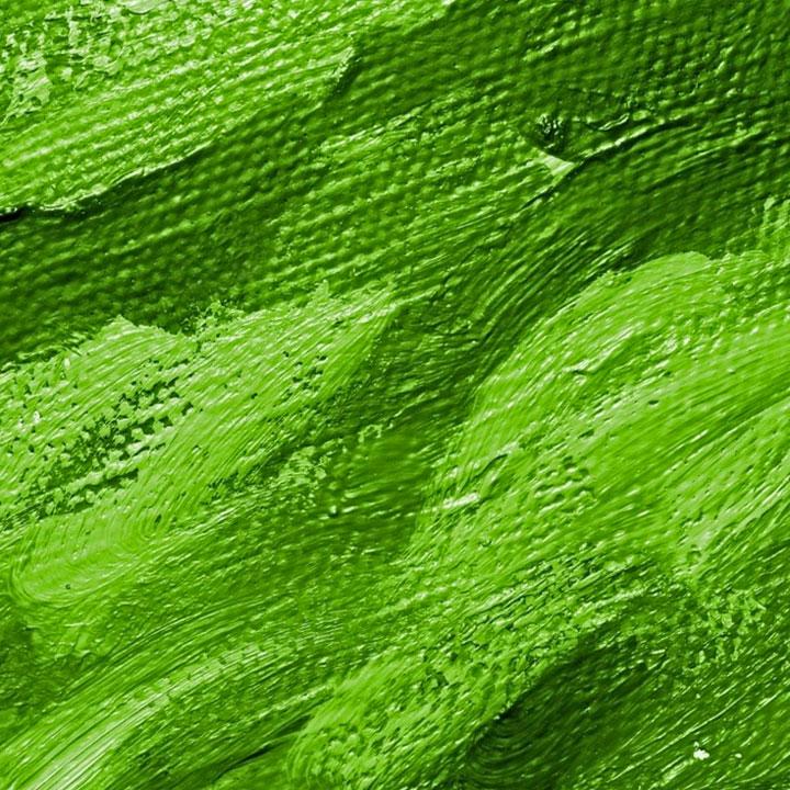 Frasi sul verde
