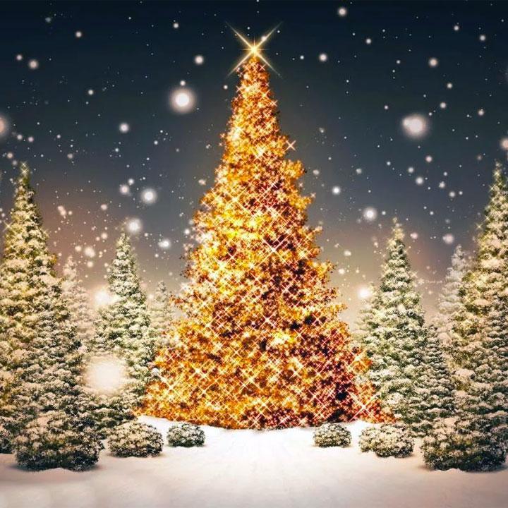 Frasi Di Natale Gianni Rodari.Il Mago Di Natale Poesia Di Gianni Rodari