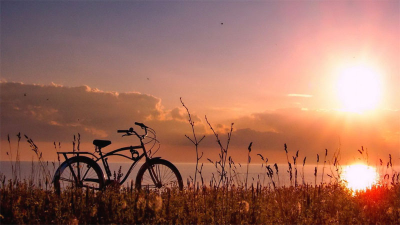 Bici nel parco al tramonto