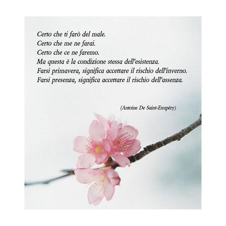 Antoine De Saint Exupéry Certo Che Ti Farò Del Male Certo Che Me
