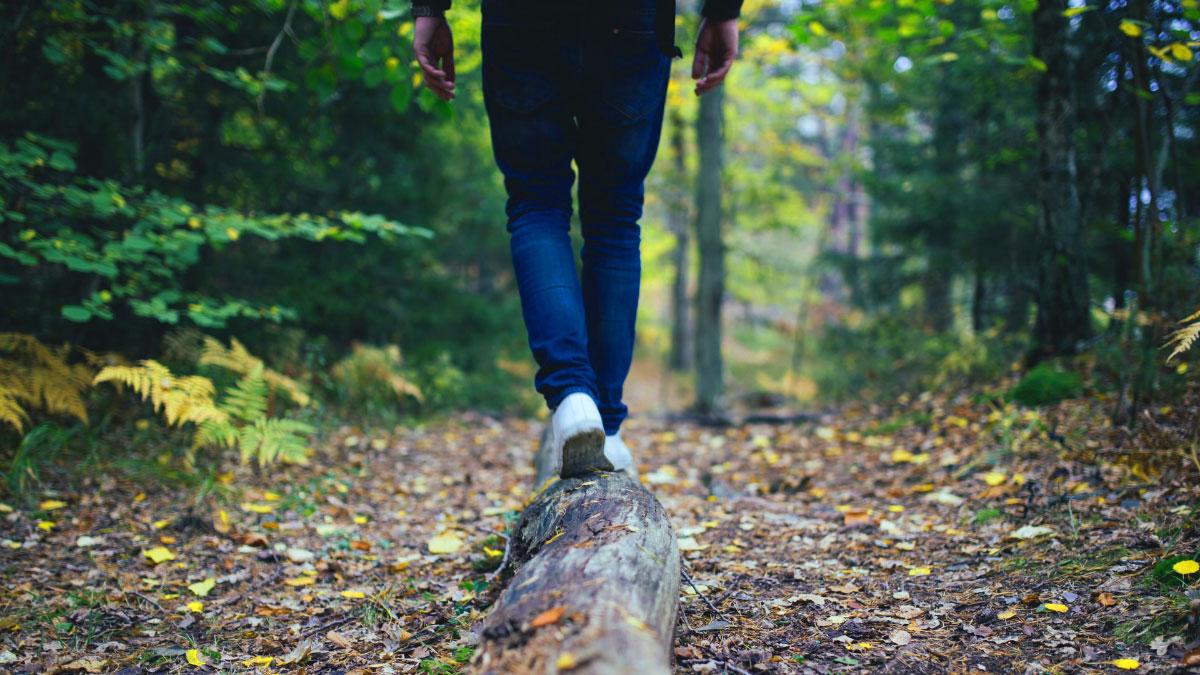 in equilibrio sul tronco