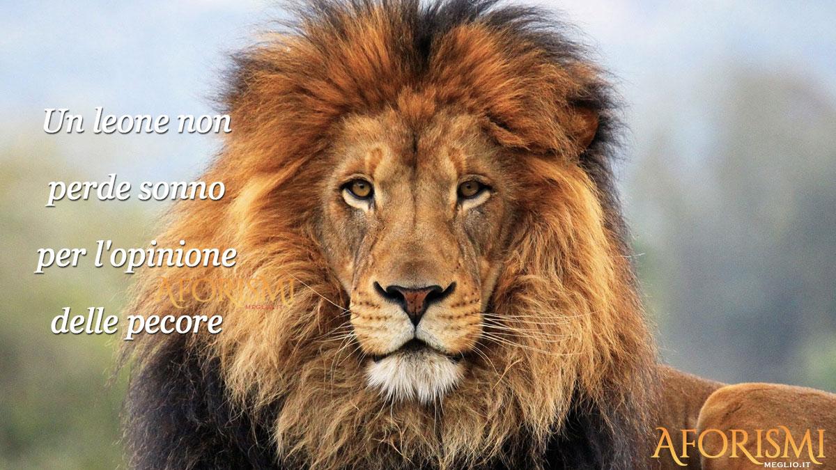 Frasi Sul Coraggio Del Leone
