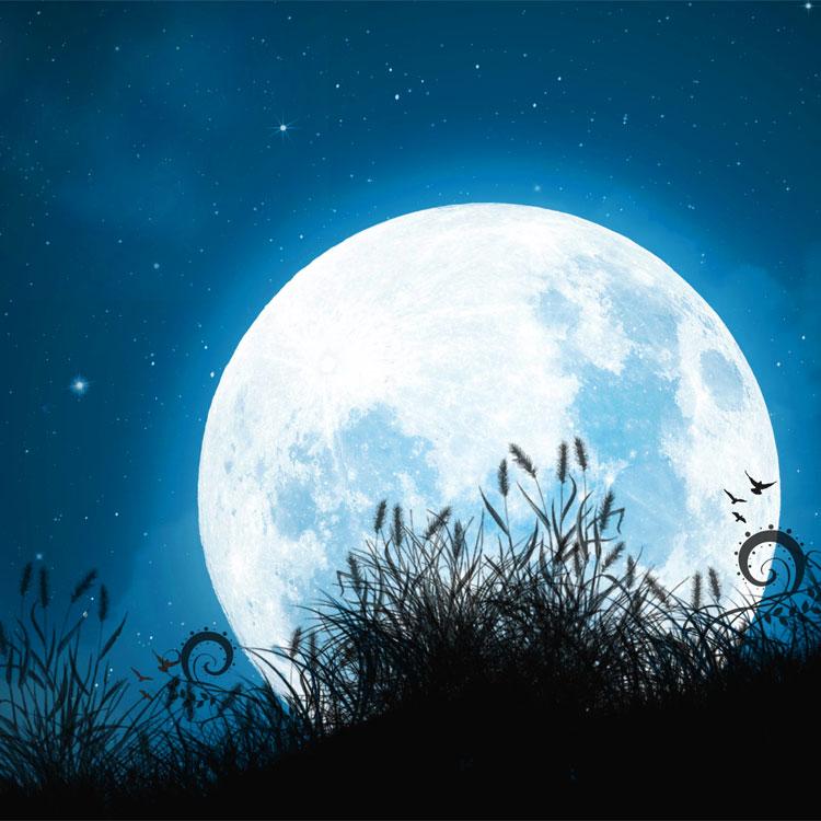 Amato sulla luna UM34