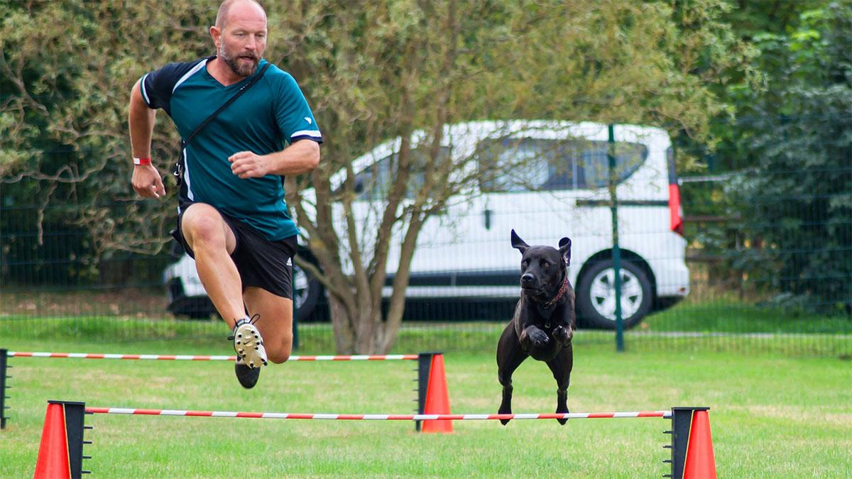 salto a ostacoli con il cane