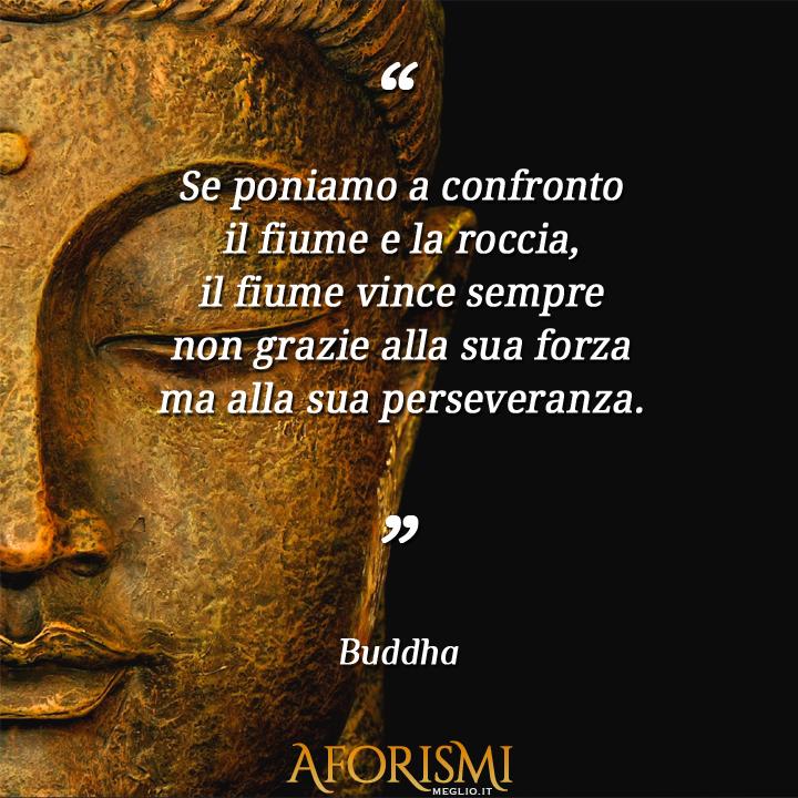 Buddha se poniamo a confronto il fiume e la roccia il fiume vince sempre non grazie alla sua - Il budda nello specchio pdf gratis ...