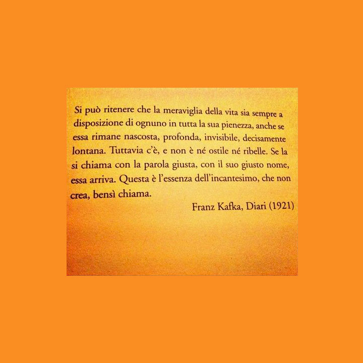 Franz Kafka Si Può Ritenere Che La Meraviglia Della Vita