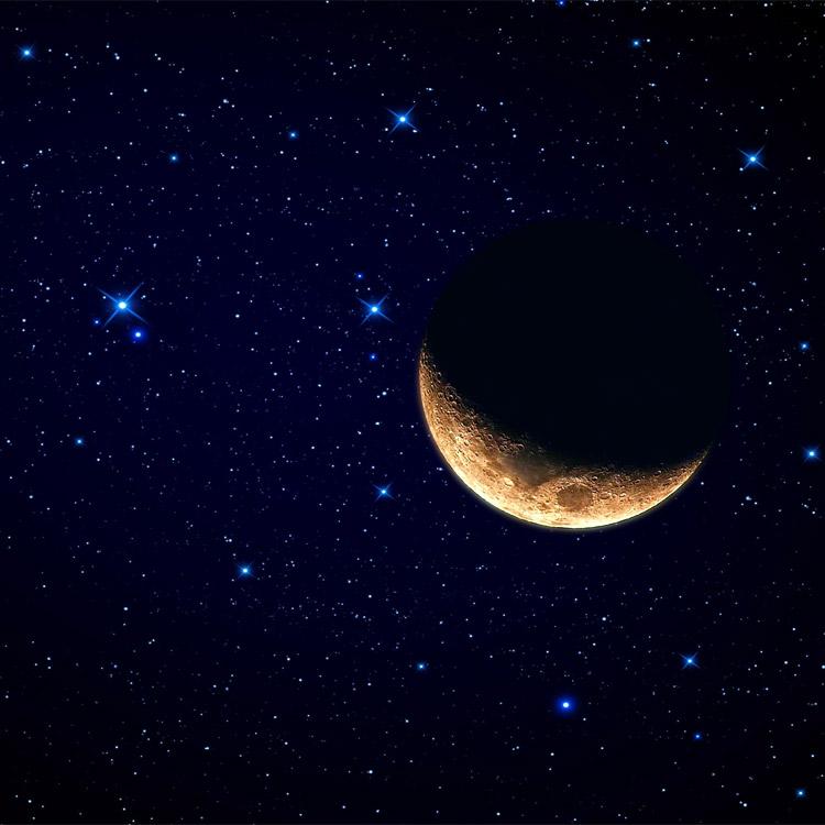 Famoso sulle stelle QN71